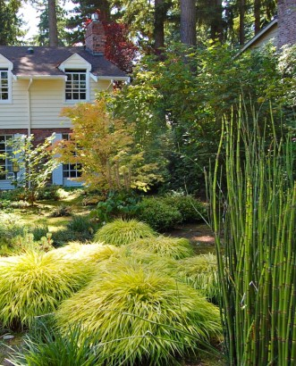 Michael Muro | Seattle Garden Design